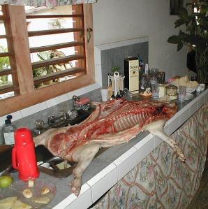 Babi yang dilapah