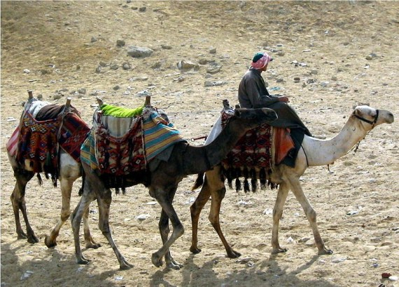 Perjalanan di padang pasir